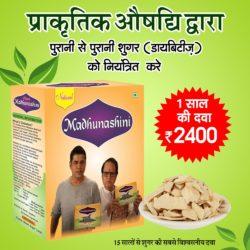 Ayurvedic Medicine For Diabetes   Herbal Madhunashini