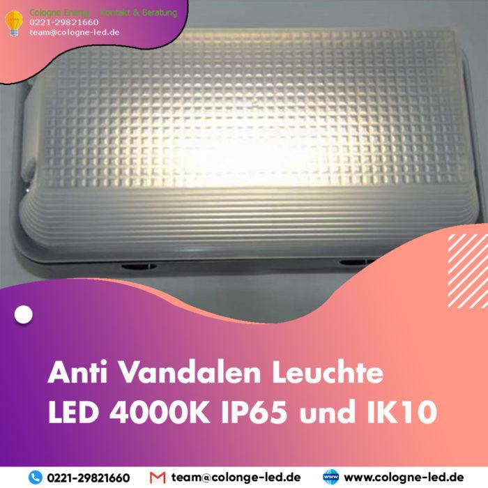 Anti Vandalen Leuchte LED 4000K IP65 und IK10